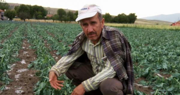 20 dakikalık dolu tarım alanlarını vurdu