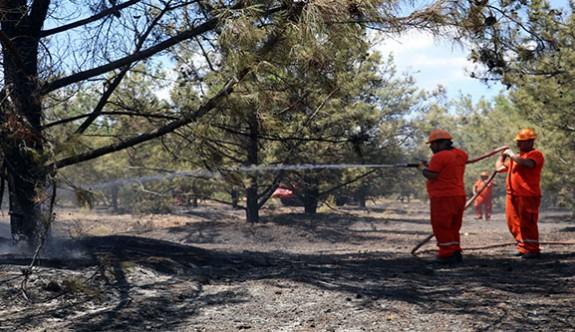 Antalya'da Termessos Milli Parkı yakınlarında orman yangını