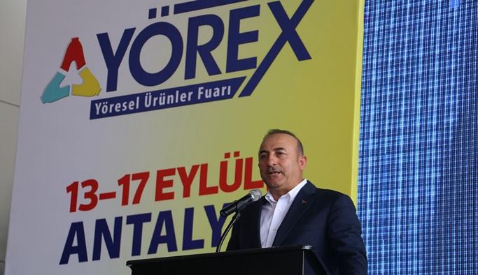 """Çavuşoğlu: """"Çin ihracatının önü açılıyor''"""