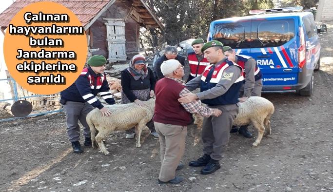 Yaşlı adamın hayvanlarına kavuşma mutluluğu
