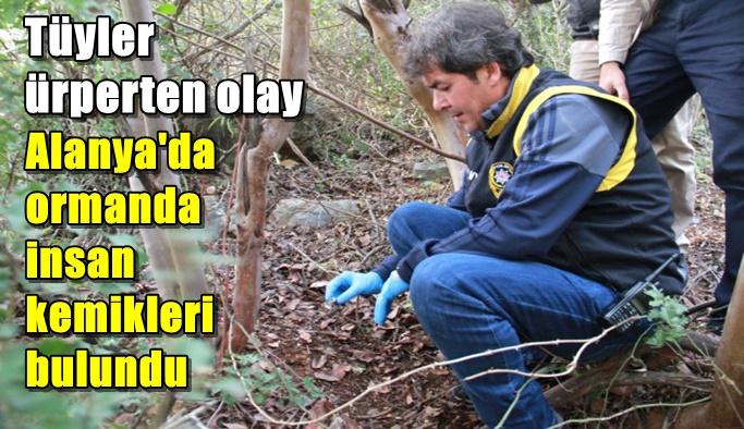 Alanya'da ormanlık alanda insan kemikleri bulundu
