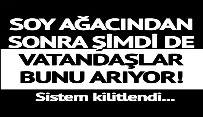 E-Devlet'ten soy ağacını sorgulayan vatandaşlar şimdi de...
