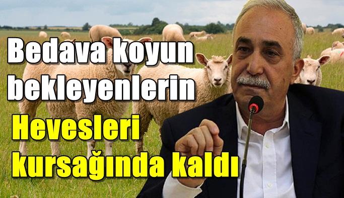 Fakıbaba: Herkese bedava 300 koyun verilmeyecek!