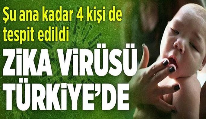 O virüse Türkiye'de de rastlandı! Öldürüyor!
