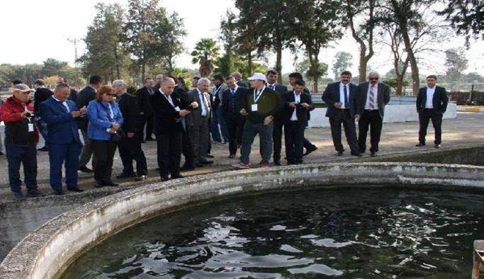 Orta Asya'ya su ürünleri yetiştiriciliğinde Fethiye modeli
