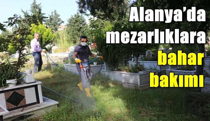 Alanya'da mezarlıklara bahar bakımı