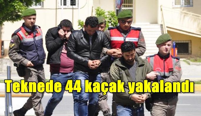 Teknede 44 kaçak yakalandı