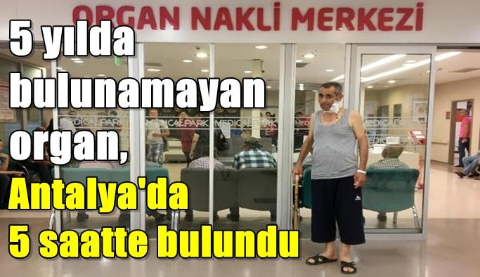 5 yılda bulunamayan organ, Antalya'da 5 saatte bulundu