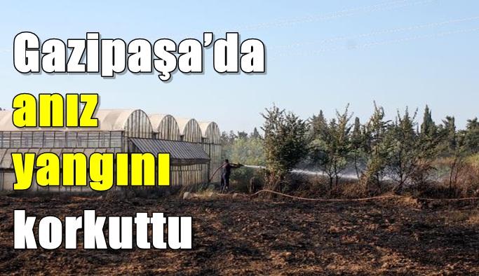 Gazipaşa'da anız yangını korkuttu