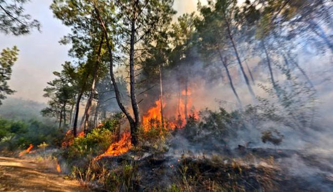 Tatilcilere orman yangını uyarısı