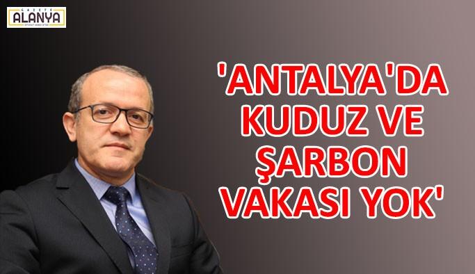 'Antalya'da kuduz ve şarbon vakası yok'