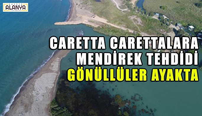 Dünyaca ünlü nehirde carettalara mendirek tehdidi