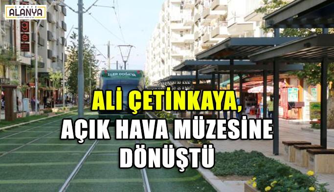 Ali Çetinkaya açık hava müzesine dönüştü