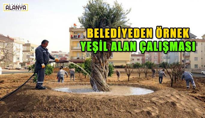Belediyeden örnek yeşil alan çalışmaları