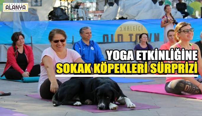 Yoga etkinliğine sürpriz katılımcılar !