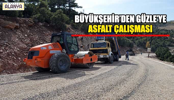 Büyükşehir'den Güzle'ye asfalt çalışması