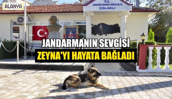 Jandarmanın sevgisi Zeyna'yı hayata bağladı