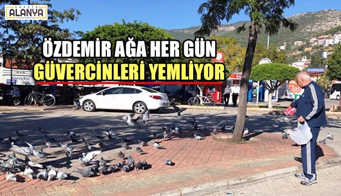 Özdemir Ağa her gün güvercinleri yemliyor