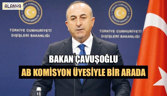 Bakan Çavuşoğlu AB Komisyon üyesiyle bir arada