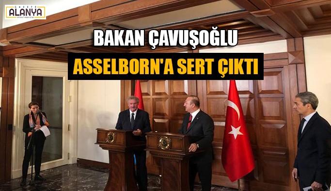 Bakan Çavuşoğlu Asselborn'a sert çıktı