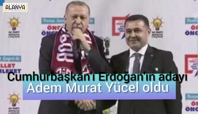 Yücel'i Cumhurbaşkanı Erdoğan açıkladı