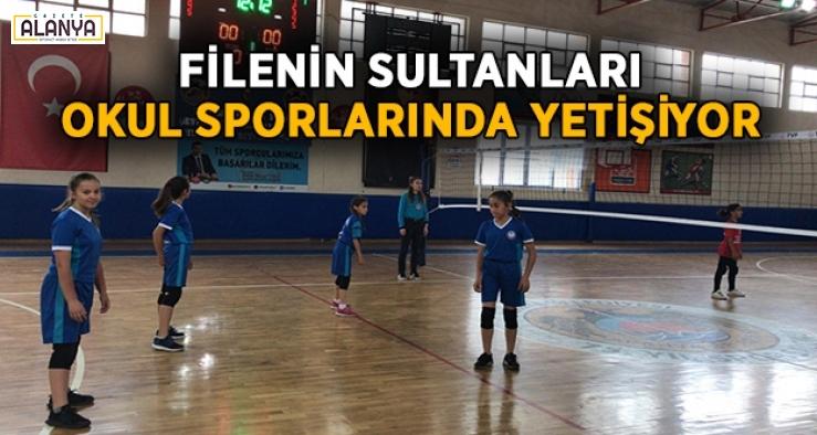 Filenin Sultanları okul sporlarında yetişiyor