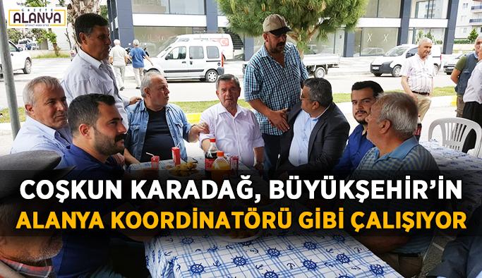 Karadağ, Büyükşehir'in Alanya Koordinatörü gibi çalışıyor