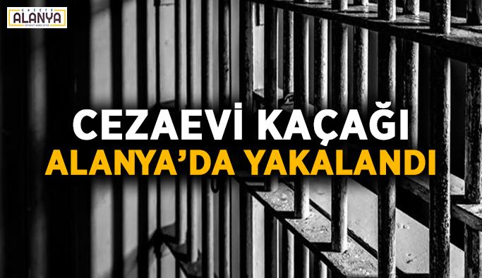 Cezaevi kaçağı Alanya'da yakalandı