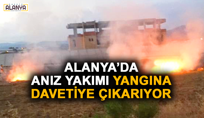Alanya'da anız yakımı yangına davetiye çıkarıyor