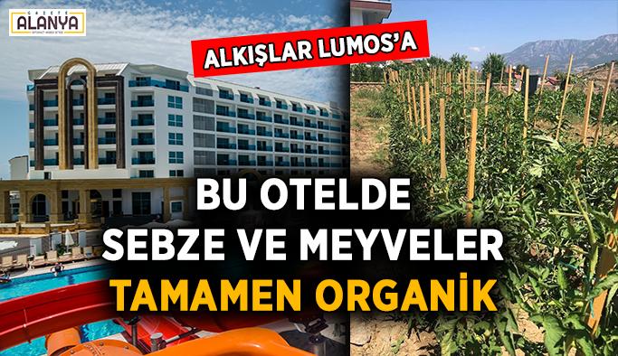 Bu otelde sebze ve meyveler organik