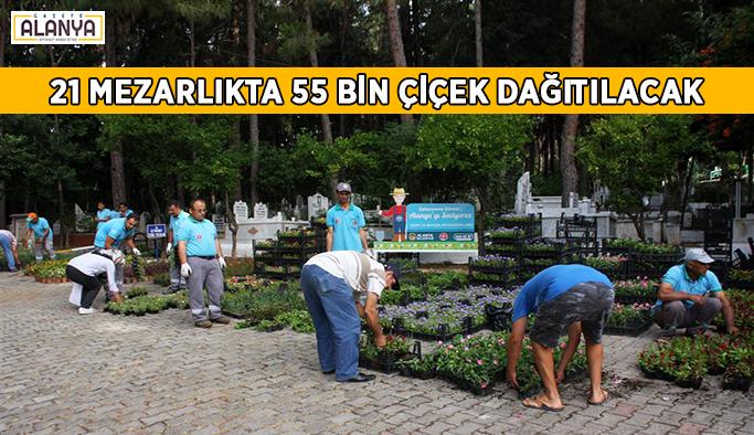 21 mezarlıkta 55 bin çiçek dağıtılacak