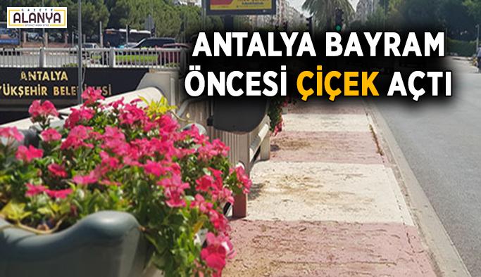Antalya bayram öncesi çiçek açtı