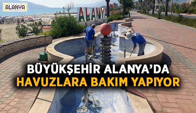 Büyükşehir Alanya'da havuzlara bakım yapıyor