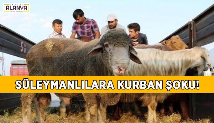 Süleymanlılara kurban şoku!
