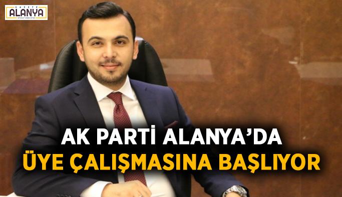 AK Parti Alanya'da üye çalışmasına başlıyor