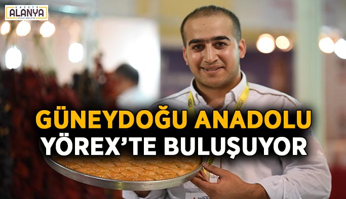 Güneydoğu Anadolu YÖREX'TE buluşuyor