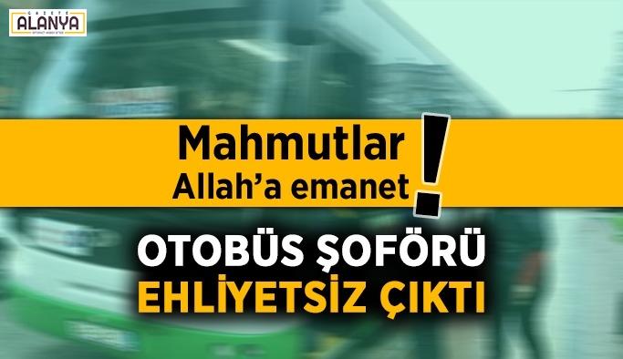 Yok artık! Mahmutlar otobüs şoförü ehliyetsiz çıktı
