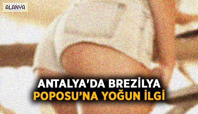 Antalya'da Brezilya poposu'na yoğun ilgi