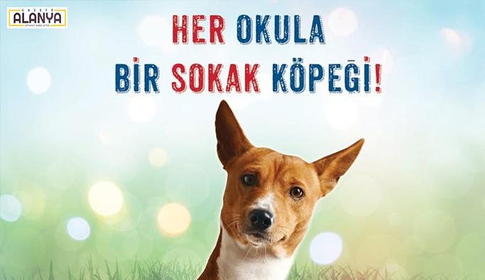 """Antalya'da """"Her okula bir sokak köpeği"""" projesi"""