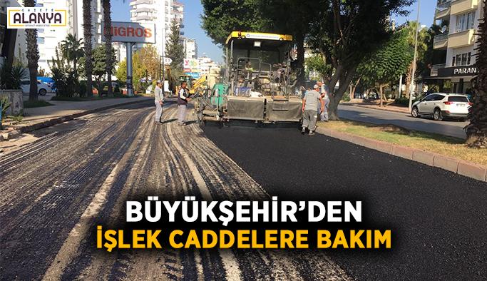 Büyükşehir'den işlek caddelere bakım