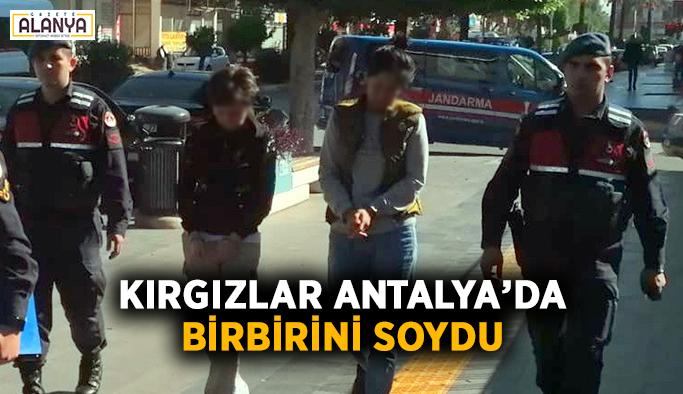 Kırgızlar Antalya'da birbirini soydu