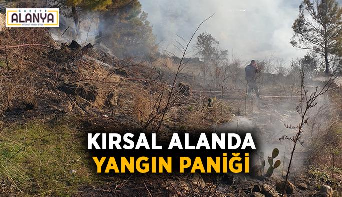 Kırsal alanda yangın paniği