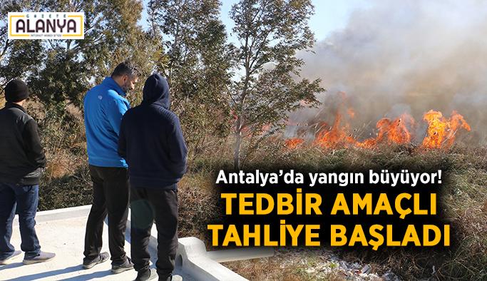 Antalya'da yangın büyüyor! Tedbir amaçlı tahliye başladı
