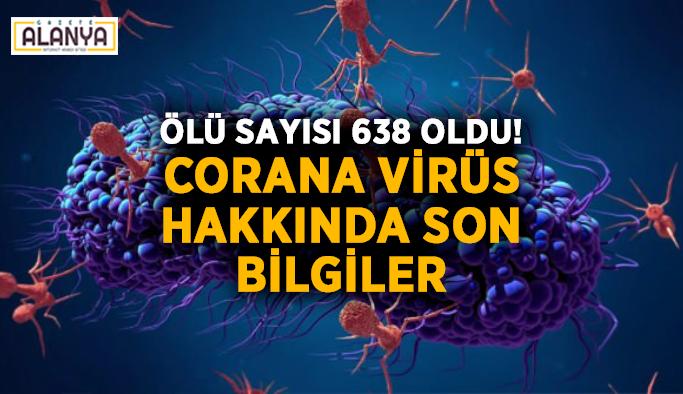 Ölü sayısı 638 oldu! Corana virüs hakkında son bilgiler