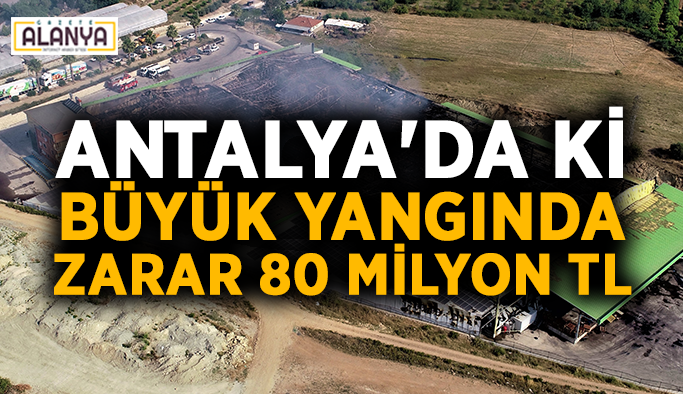 Antalya'da ki büyük yangında zarar 80 milyon TL