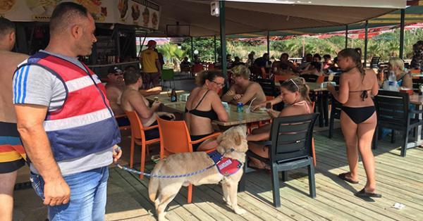 Alanya plajlarında köpekli güvenlik önlemi