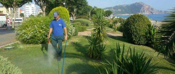 Büyükşehirden park ve bahçelere organik gübre