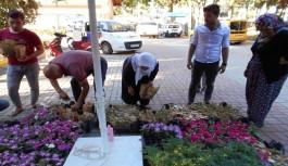 Mezarlıklarda çiçek dağıtıldı.