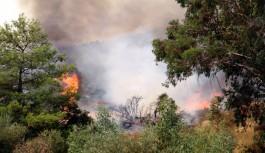 Yangın 34 saattir devam ediyor