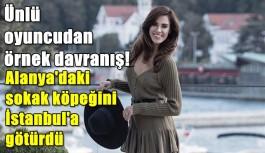 Ünlü oyuncu Alanya'daki sahipsiz köpeği İstanbul'a götürdü